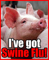swine-flu-badge-1