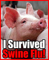 swine-flu-badge-3