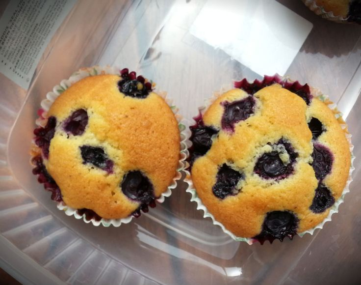 blueberry muffins cupcakes